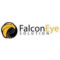 Домофоны Falcon Eye