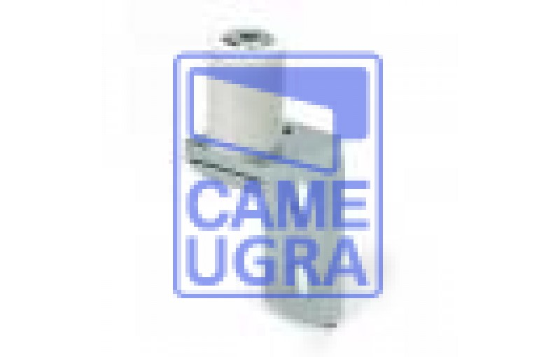 Регулируемый ролик для удерживания рельса CG-254